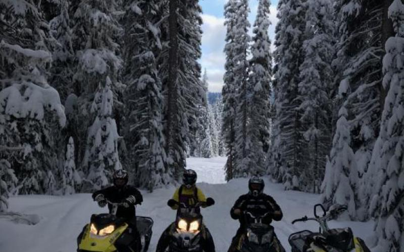 Ski-Doo Adventures Around Sicamous